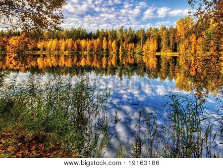 Colors of autumn river. It is photographed in Russia. 60 kilometers on East from Moscow. Autumn.