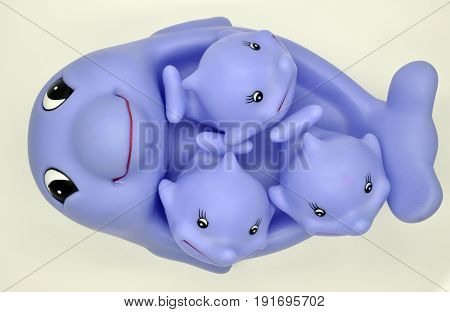 One big purple Dolphin and three small purple Dolphin for kids to play in the bathtub on a white background all together