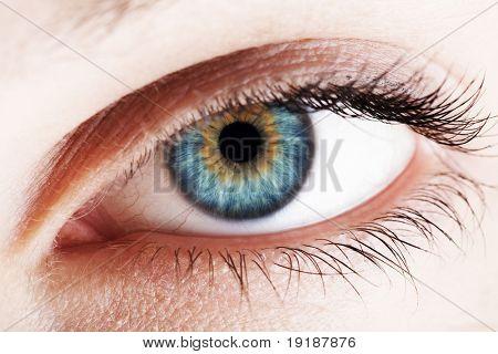 human eye. Macro shot, high contrast technique
