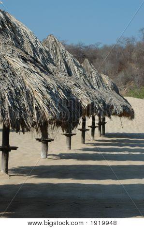 Beach Brollies