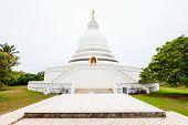 The Unawatuna Peace Pagoda poster
