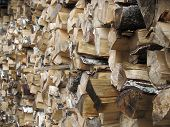 Woodpile Of Firewood poster