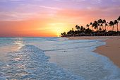 Постер, плакат: Druif beach at sunset on Aruba island in the Caribbean sea
