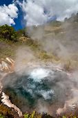 Boiling Pool - New Zealand
