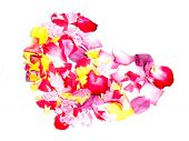 Heart Filled With Rose Petals poster