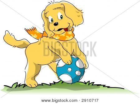 Dog Playing Ball