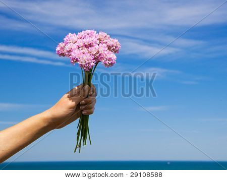 Female hand holding some wildflowers against a blue sky
