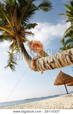 young happy boy sitting on palm tree