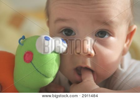 Baby With Finger In The Mouth