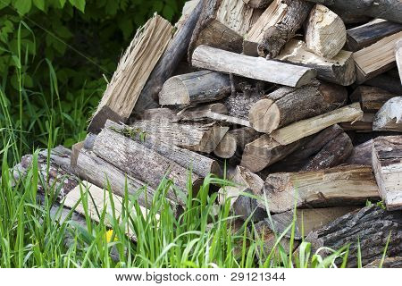 Pile Of Uncut Firewood