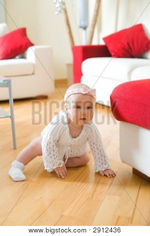 Happy Baby Girl Crawling On A Hardwood Floor