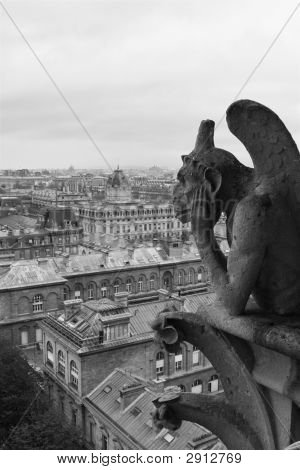 Gargoyle Overlooking Paris