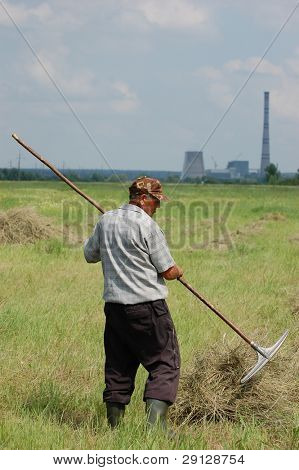 ukrainian peasant work with  rakes. Ukraine, 2008 june 13,near Kiev