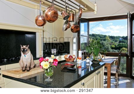 Luxury Kitchen Interior With Cat