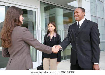 Diverse Handshake