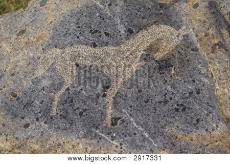 Horse - Primitive Art Draving On Stone
