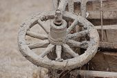 image of vinnitsa  - Old Russian horse cart - JPG