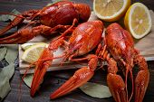 Crayfish. Red Boiled Crawfishes On Table In Rustic Style, Closeup. Lobster Closeup. poster