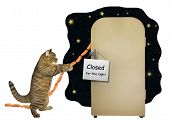 The Cat Steals Sausage From The Fridge. There Is A Sign  Closed For The Night  On The Refrigerator poster