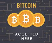 Bit-coin Accepted Vector poster