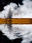Geysers and steam from hot springs rising in Yellowstone National Park reflection in water pond lake poster
