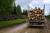 Tip Truck Transportation Of Sawn Timber. The Truck Transports Logs, On The Road. Cut Logs Are Loaded poster
