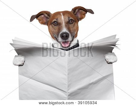 Dog Blank Newspaper