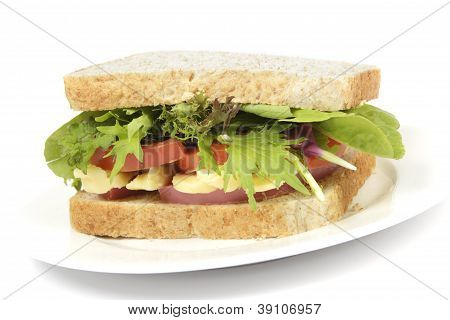 Healthy Brown Bread Sandwich On Plate