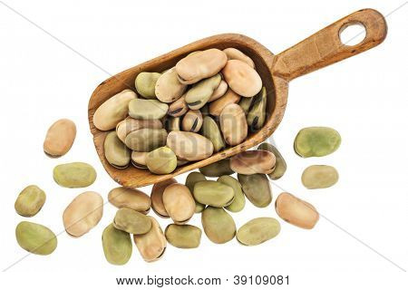 fava or broad beans on rustic wooden scoop isolated on white