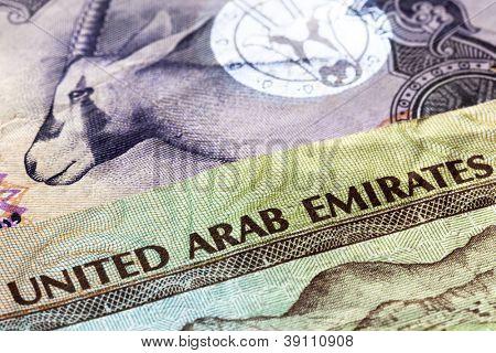 United Arab Emirates dirham banknotes in closeup.