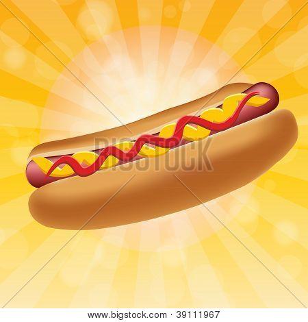 Realistic hot dog vector illustration