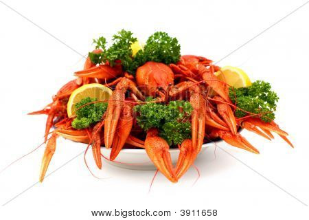 Lot Of Crayfish