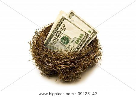 Retirement Savings Nest Egg