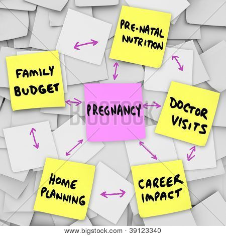 The word pregnancy on a pink sticky note surrounded by words describing important concerns related to being pregnant: family budget, home planning, pre-natal nutrition, doctor visits and career impact