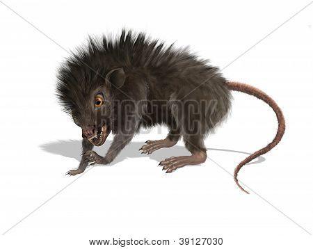 Furry Mutant Rat