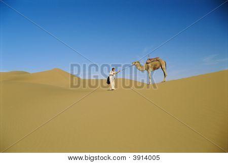 Homem de negócios levando camelo pelo deserto
