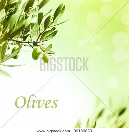 Photo of olive branch border, fresh green olives backdrop, beautiful leaves frame, abstract autumn background, image of ripe fruits with copyspace for text, organic and healthy nutrition concept