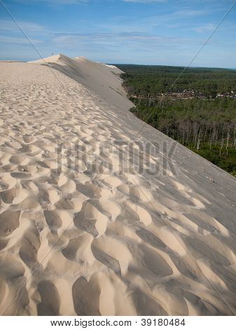 On Top Of Dune Of Pyla, Arcachon, France During