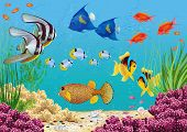 pic of saltwater fish  - Underwater landscape with various water plants and swimming tropical fish - JPG