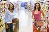 stock photo of grocery cart  - Two women talking to each other at a grocery store - JPG
