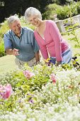 pic of happy-face  - Senior couple in a flower garden - JPG