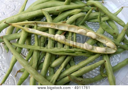 Pods Of Beans