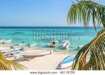 Tropical beach with boats and palm