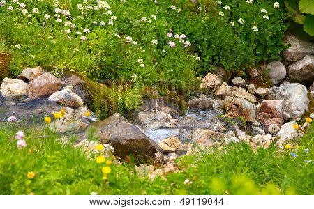 Clear Water Stream In Mountains On Green Valley With Flowers And Stones Landscape