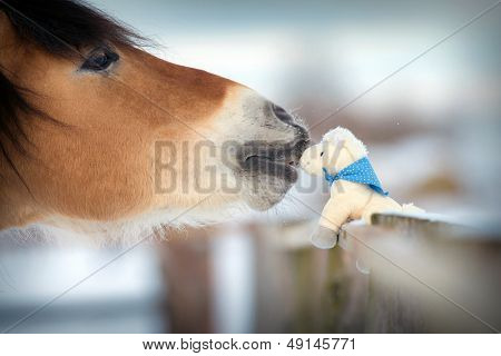 Horse and toy horse in winter, kiss.