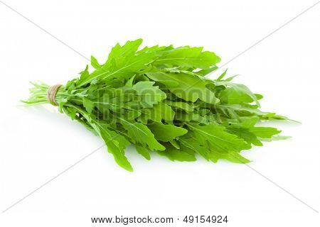 Bunch of fresh Ruccola  leaves /  rocket salad  /  isolated on white background