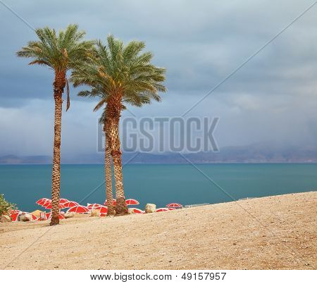 Winter on the Dead Sea. Red umbrellas and purple thunderheads