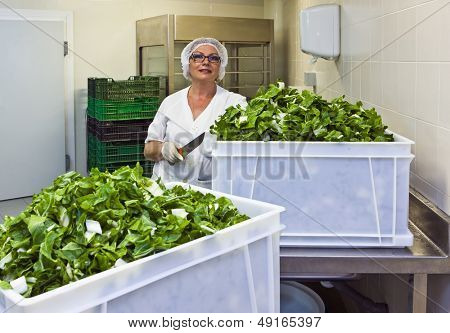 Female chef holding knife with cut leafy vegetable in hospital kitchen