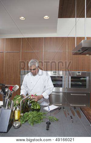 Male chef washing leafy vegetables in commercial kitchen sink