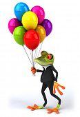 image of amazonian frog  - Fun frog - JPG